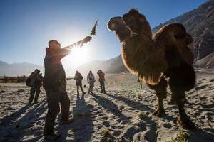 Ladakh Tibet fotótra galéria - Werk képek